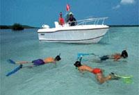 Caribbean Rent A Car & Jackson Marine