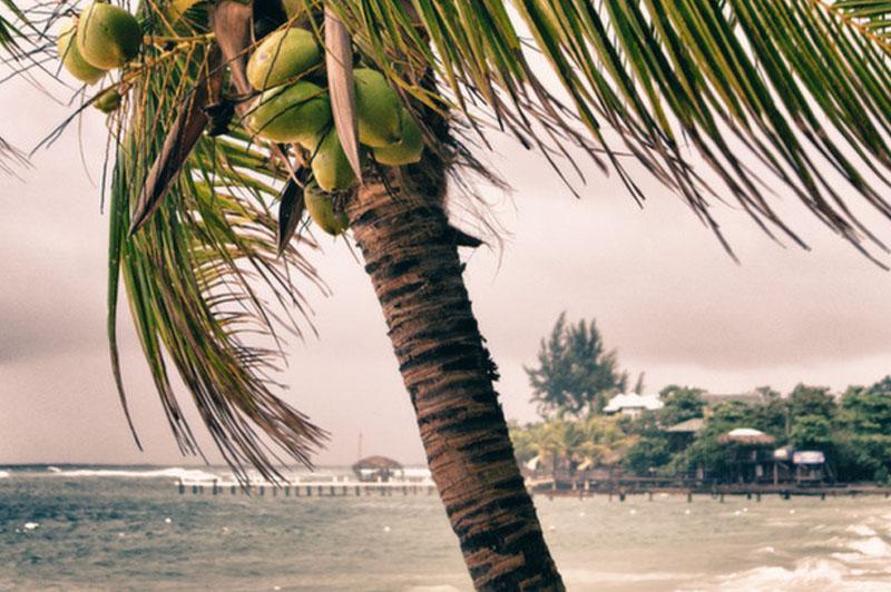 Hurricane Felix Roatan Honduras Travel Guide