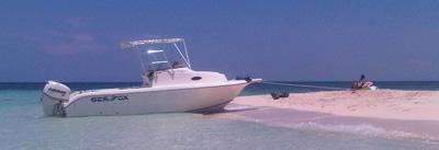 Jackson Marine Fishing Sport Charters