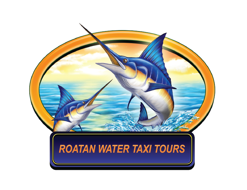 Roatan Water Taxi Tours, West End
