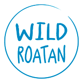 Wild Roatan, West End, Roatan